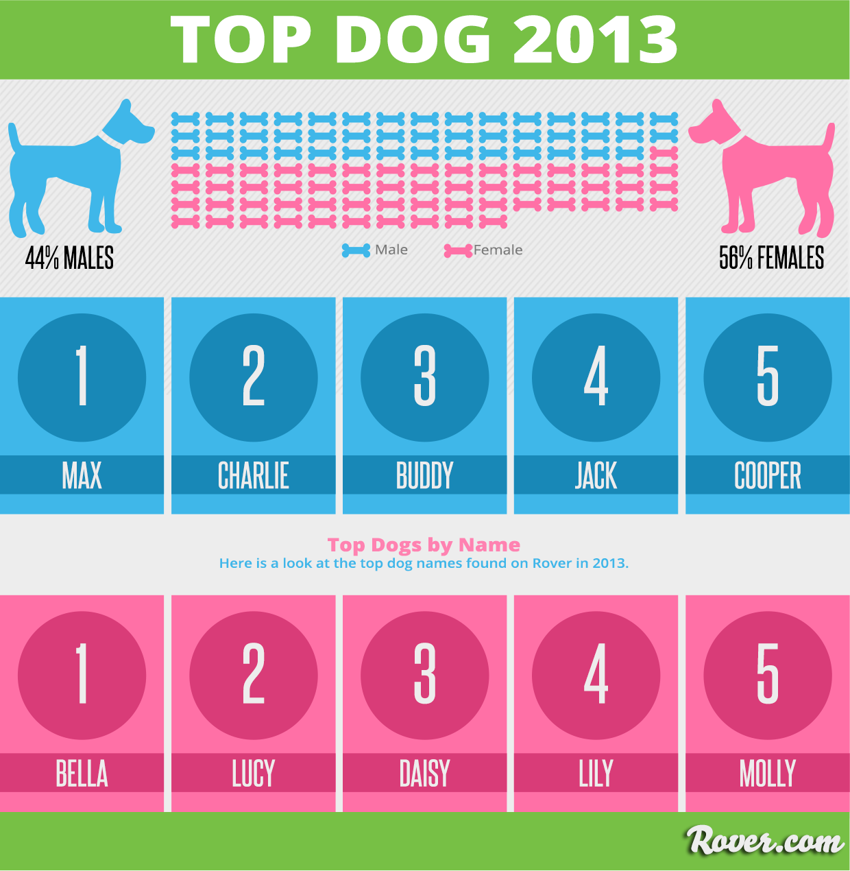 Most Popular Dog Names Of 2013 Long Hairstyles