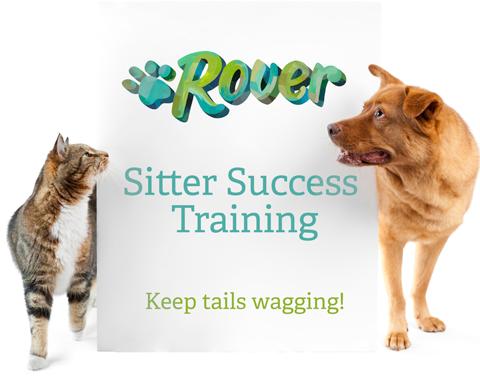 Sitter-Success-Banner
