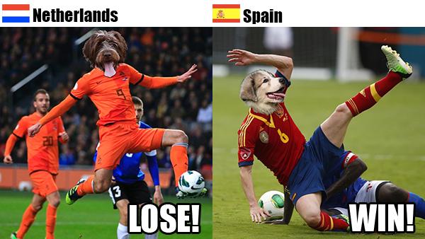 Rover.com's World Cup Predictions: Netherlands vs. Spain // Rover.com Blog