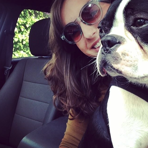 A happy #RoverLyfts winner and her beautiful Boston Terrier! // Rover.com Blog