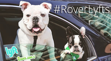 Join Rover and Lyft on Friday, June 20 for Canine Coworkers Day! // Rover.com Blog