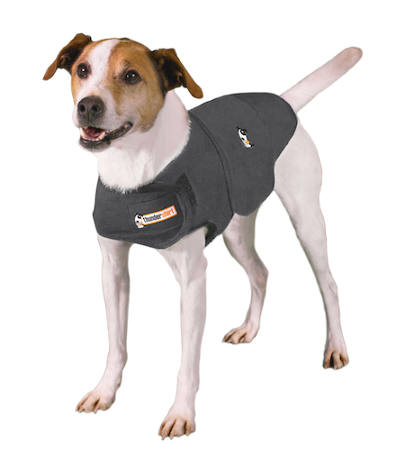 Thundershirts can help your dog feel less anxious during fireworks or thunder. // Photo courtesy of Thundershirt