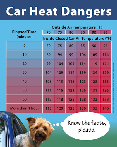 Car heat danger: The inside of a car can become very hot, very quickly, even on cooler days. // Credit: Cummings School of Veterinary Medicine at Tufts University