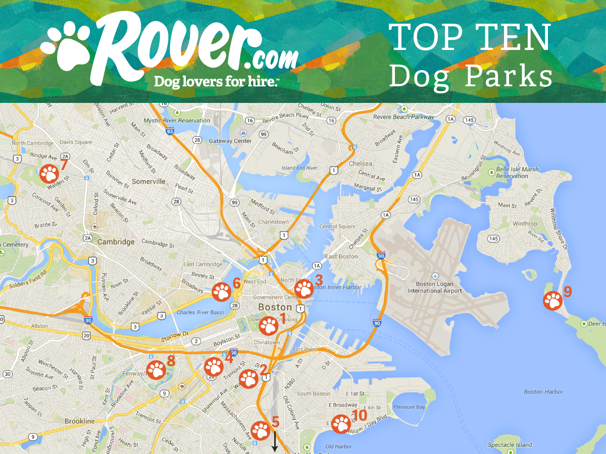 Dog Friendly Parks in Boston, Ma