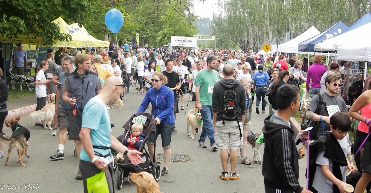 Rover.com at the Seattle Animal Shelter Furry 5k