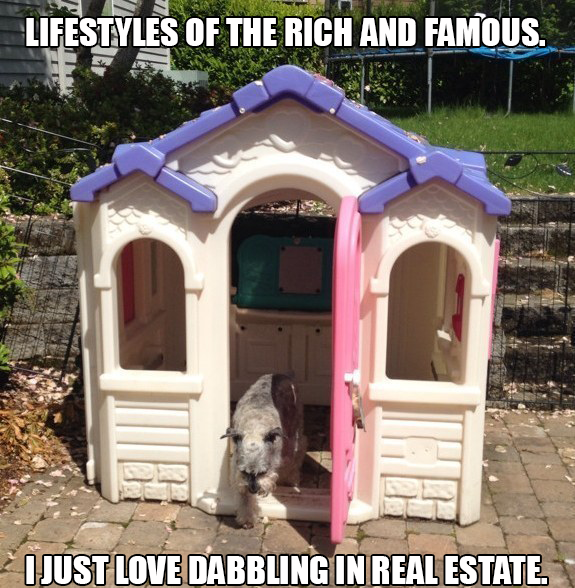 Dog Friendly Real Estate