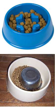 slow feeder dog dishes