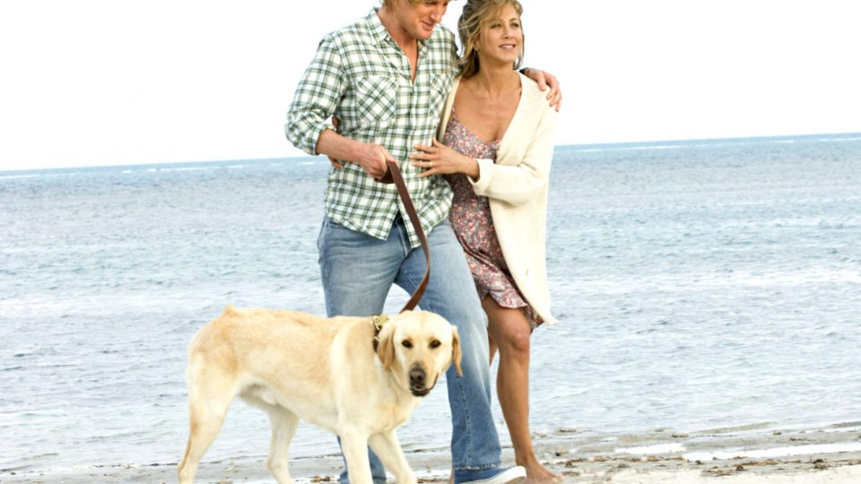 Marley and Me - Does the Dog Die?