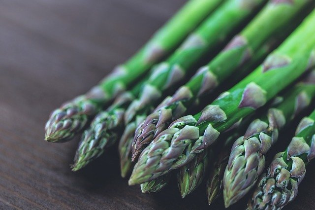 Can dogs eat asparagus, like these verdant spears?