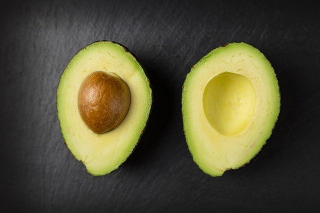 Can Cats Eat Avocados Nutrients Dangers And Side Effects