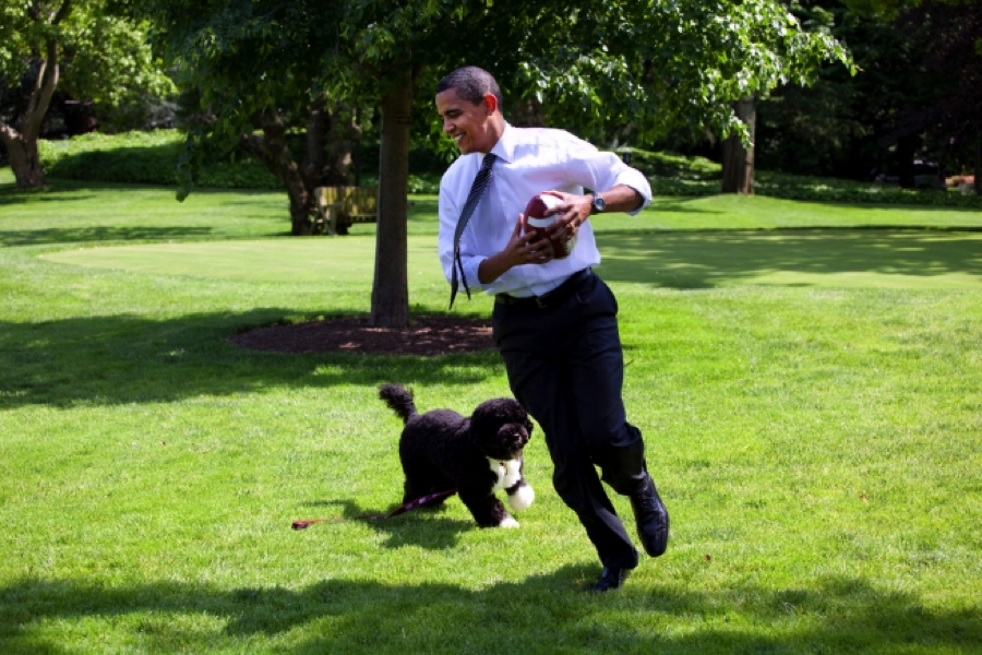 Barack Obama and Bo the Portuguese water dog