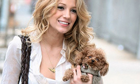Blake Lively, Celeb Dog Lover