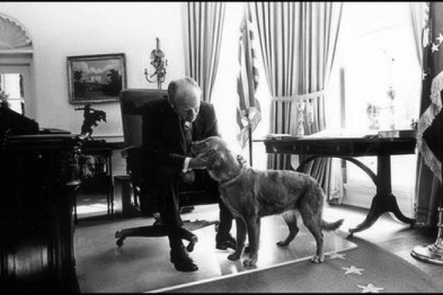 Gerald Ford's Golden Retriever dog, Liberty