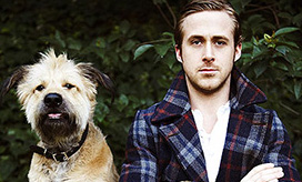 Ryan Gosling, Celeb Dog Lover