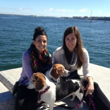 Rover dog sitting - Boston dog sitters