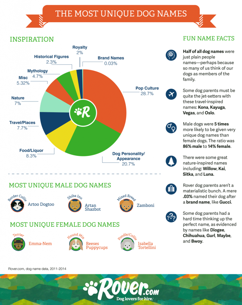 Rover unique dog names infographic