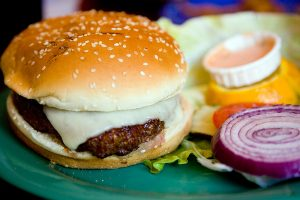 Burger - healthy dog food recipes