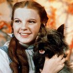 Dorothy and Toto - list of dog movies
