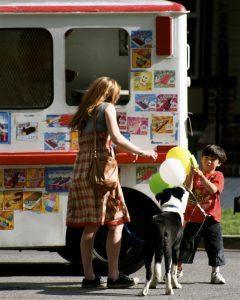 Ice cream truck - healthy homemade dog food