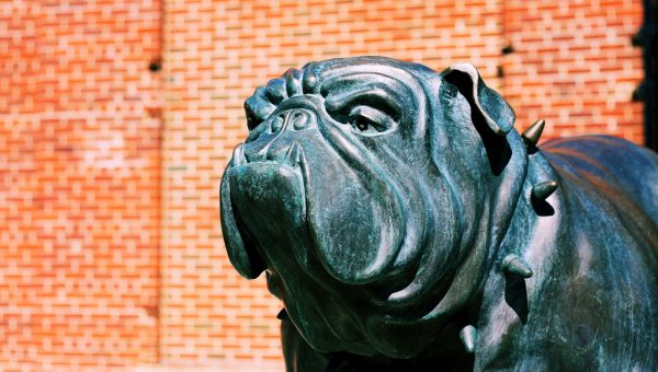 Famous Dog Mascots Throughout History