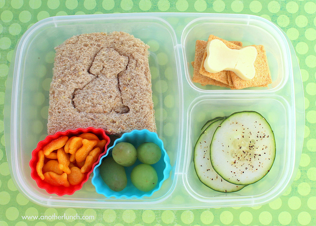 Dog bento - best dog lunch boxes for back to school