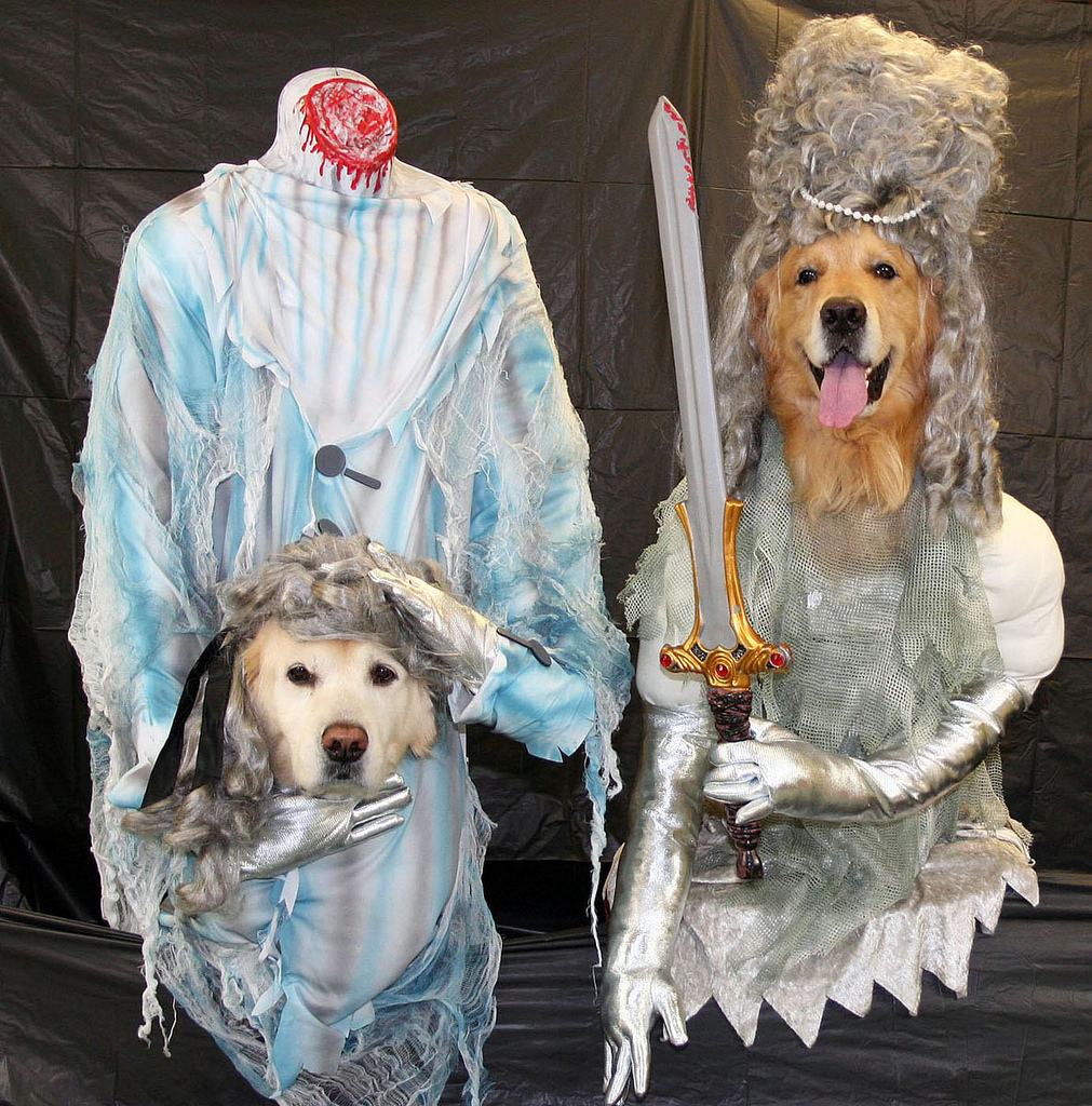 Headless ghost dogs in costume