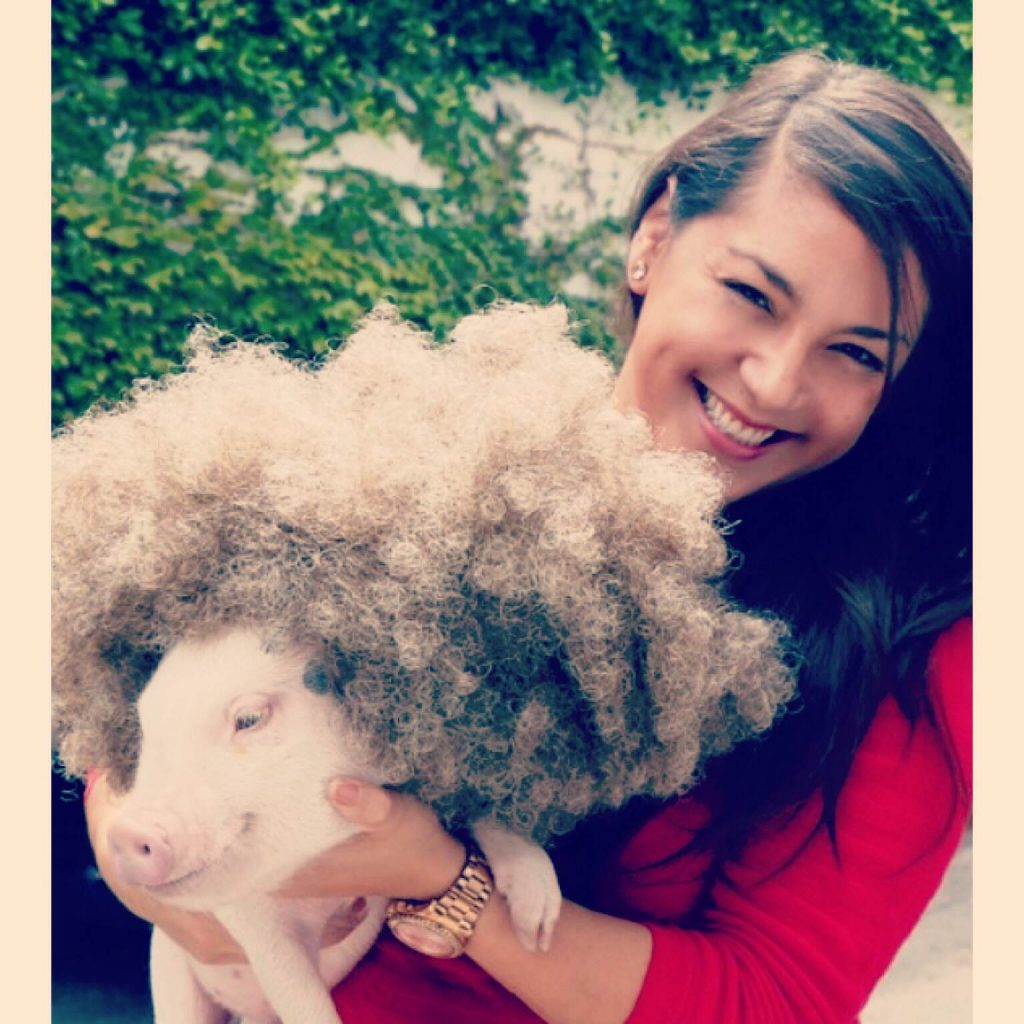 Melanie and Hammy - Hamlet the Pig