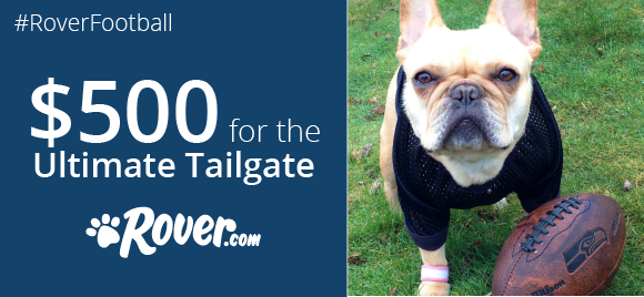 Game On! Show Your Dog's Football Spirit, Win $500