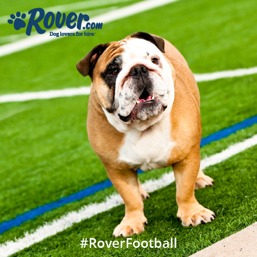 Rover football contest - #roverfootball