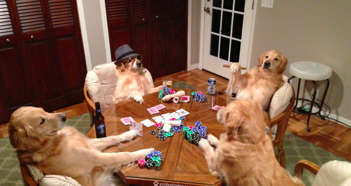 bailey-poker