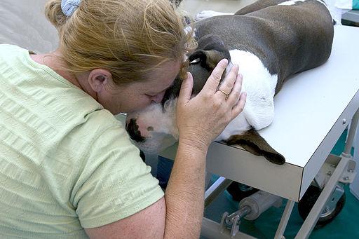 Woman cuddles dog