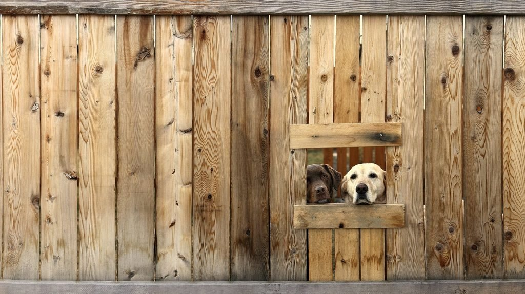 Two dogs looking through a fence - tips for training territorial dogs