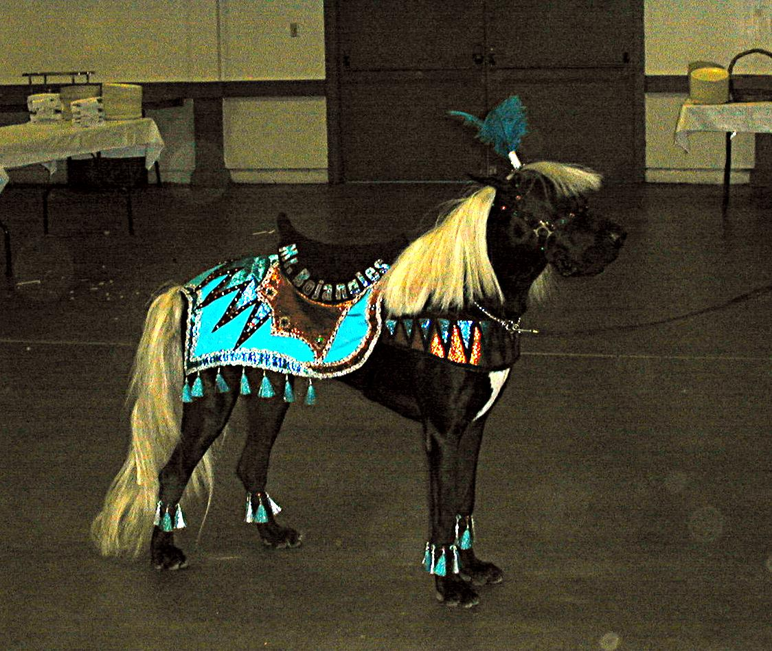great dane horse costume