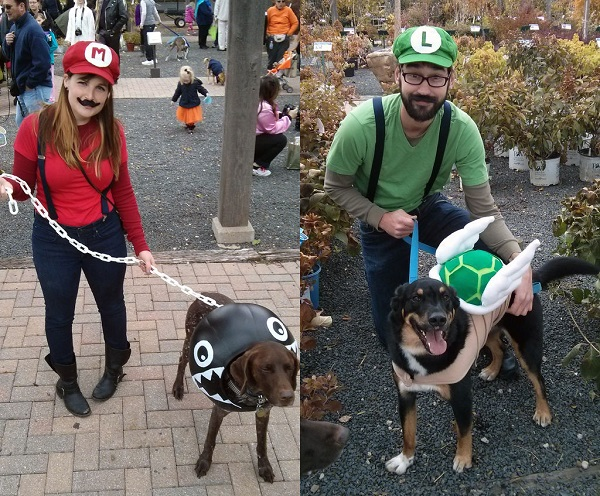 Super Mario dog costume