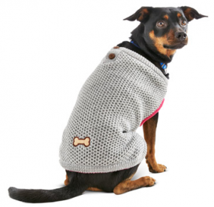 Petco dog outfit - fall fashion for dogs