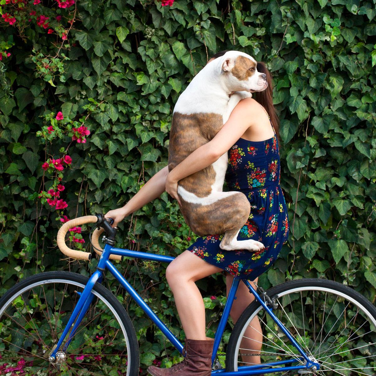 Puka on a bike