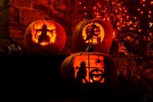 Jackolanterns - Halloween pet safety
