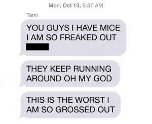 texts re: nyc rat hunting