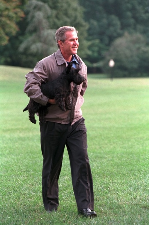 Presidential pet Barney being carried on White House lawn by George W. Bush