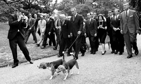 President Lyndon B. Johnson walking with beagles Him and Her