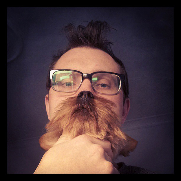 dogbearding-bf3