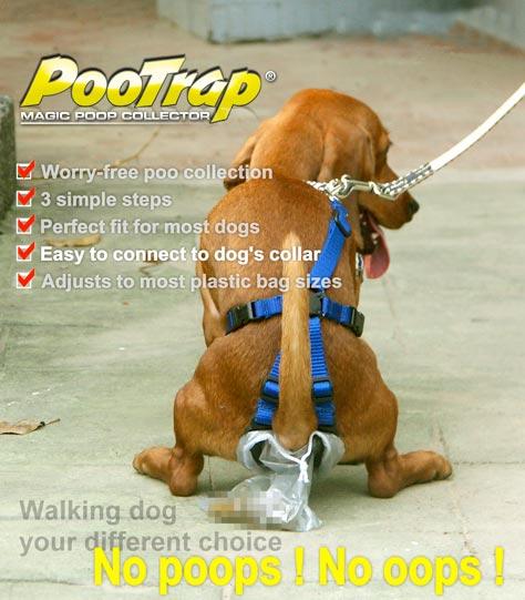 pootrap
