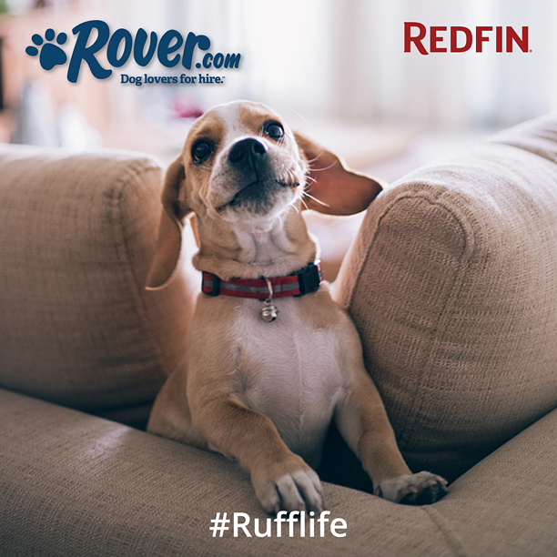 #RuffLife sweepstakes