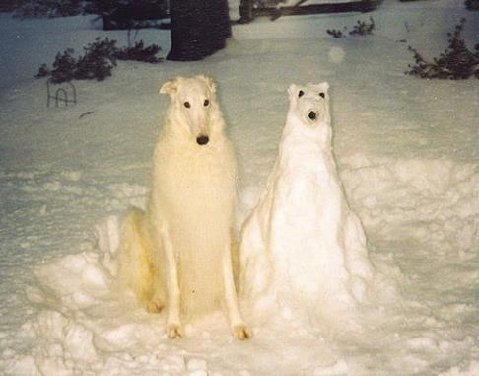 snowman winter dog