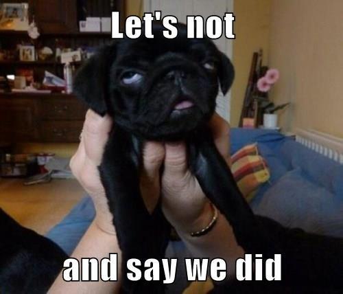 sarcastic pug