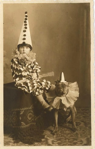 funny vintage dog photography clowns