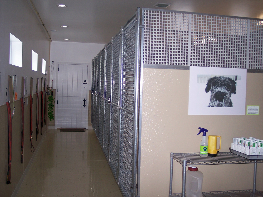 http://commons.wikimedia.org/wiki/File%3ADog_kennels_indoor.jpg