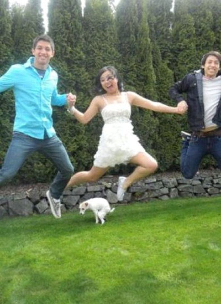 perfectly timed dog photo jump