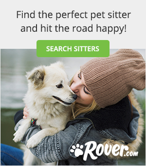 Rover.com dog sitting
