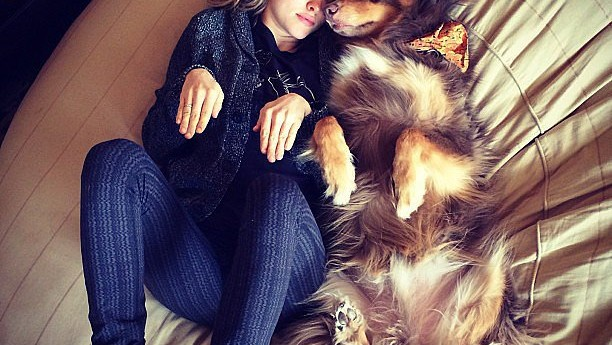 7 Weird—and Adorable—Moments in Celebrity Pet Parenthood